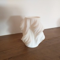 Small Julia Vase #011 - Heatwave 3D Printing 9234