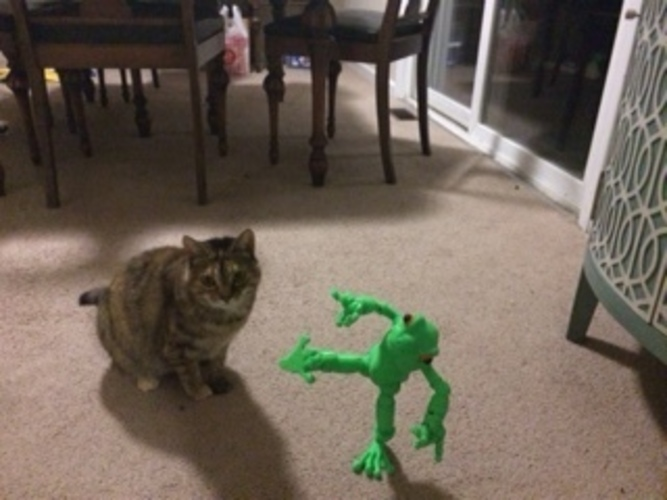 Froggy: the 3D printed ball-jointed frog doll 3D Print 9816