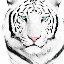 mr_m_wood's avatar