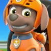 Small paw patrol about zuma2