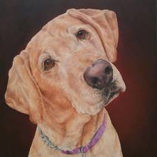 kate_wallis's avatar